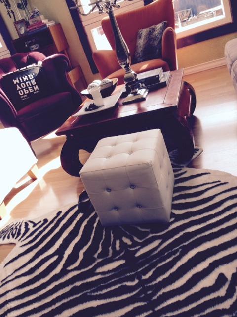 olohuoneen luumu tuoli